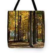 Tree's In The Forest Tote Bag