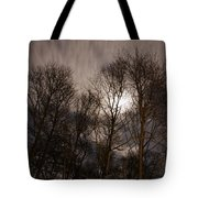 Trees In The Nigh Tote Bag