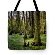 Trees In The Swamp Tote Bag