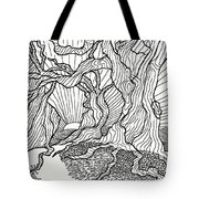 Trees In The Woods   Tote Bag