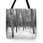 Trees In Winter Snow, Black And White Tote Bag