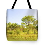 Trees In Zambia Tote Bag