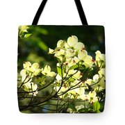 Trees Landscape Art Sunlit White Dogwood Flowers Baslee Troutman Tote Bag