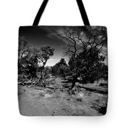 Trees Of Canyon Lands Tote Bag