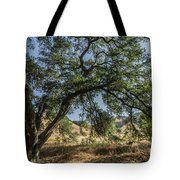 Trees Of The Forest 4 Tote Bag