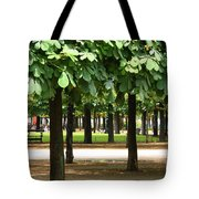 Trees Of Tuilieres Tote Bag