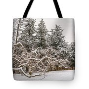 Trees Of Winter Tote Bag
