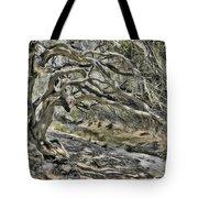 Trees Of Ziarat Tote Bag