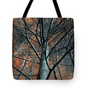 Trees On Red. Tote Bag