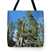 Trees On The Edge 1 Tote Bag