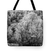 Trees On The River Tote Bag