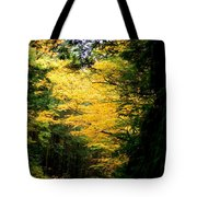 Trees Over The Flumes Gorge Tote Bag