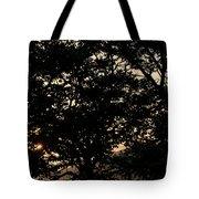 Trees - San Salvador II Tote Bag