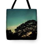 Trees - San Salvador V Tote Bag