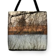 Trees With A Reflection Tote Bag