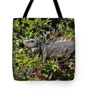 Treetop Iguana Tote Bag