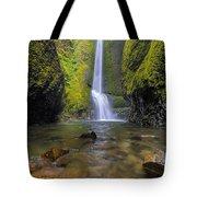Trek To Lower Oneonta Falls Tote Bag