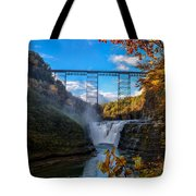 Tressel Over The High Falls Tote Bag by Dick Wood