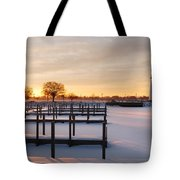 Tri-centennial Light Tote Bag