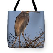 Tri Color Heron Tote Bag