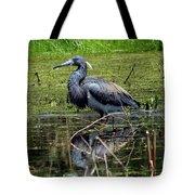 Tri-colored Heron 12 Tote Bag