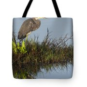 Tri-colored Heron And Reflection Tote Bag