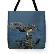 Tri Colored Heron Fishing Tote Bag