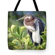 Tri-colored Heron On Guard  Tote Bag