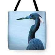 Tri Colored Pose Tote Bag