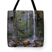 Trickle Wall Tote Bag
