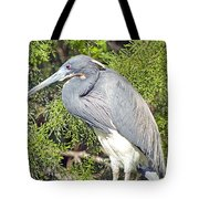 Tricolor Heron Profile Tote Bag