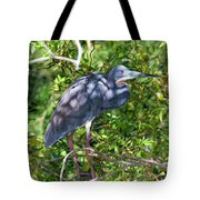 Tricolor In The Shadows Tote Bag