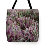 Tricolor Moses In The Cradle Plant Tote Bag