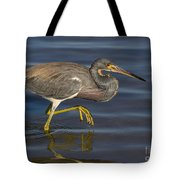 Tricolored Heron 1 Tote Bag