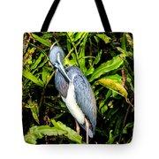 Tricolored Heron 3 Tote Bag