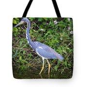 Tricolored Heron Hunting Tote Bag