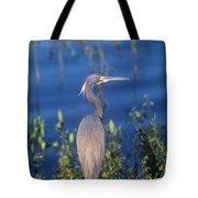 Tricolored Heron In Monet Like Setting Tote Bag