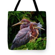 Tricolored Siblings Tote Bag