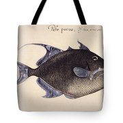 Trigger-fish, 1585 Tote Bag