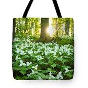 Trillions Of Trilliums Tote Bag