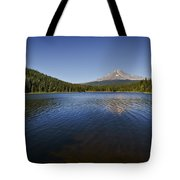 Trillium In The Fall Tote Bag