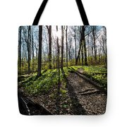 Trillium Trail Tote Bag by Matt Molloy