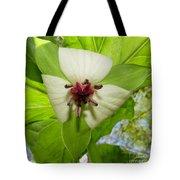 Trillium Wildflower Tote Bag