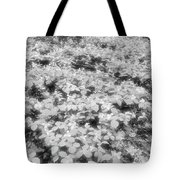 Trilliums On The Forest Floor Bw Tote Bag