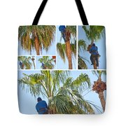 Trimming The Palm Trees Tote Bag