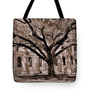 Trinity Episcopal Cathedral Court Yard Tote Bag