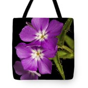Trio In Purple Tote Bag