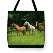 Trio In Spring Tote Bag