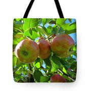 Trio Of Apples Tote Bag