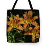 Trio Of Orange Tiger Lilies Tote Bag